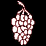 Wijngaard Dassemus
